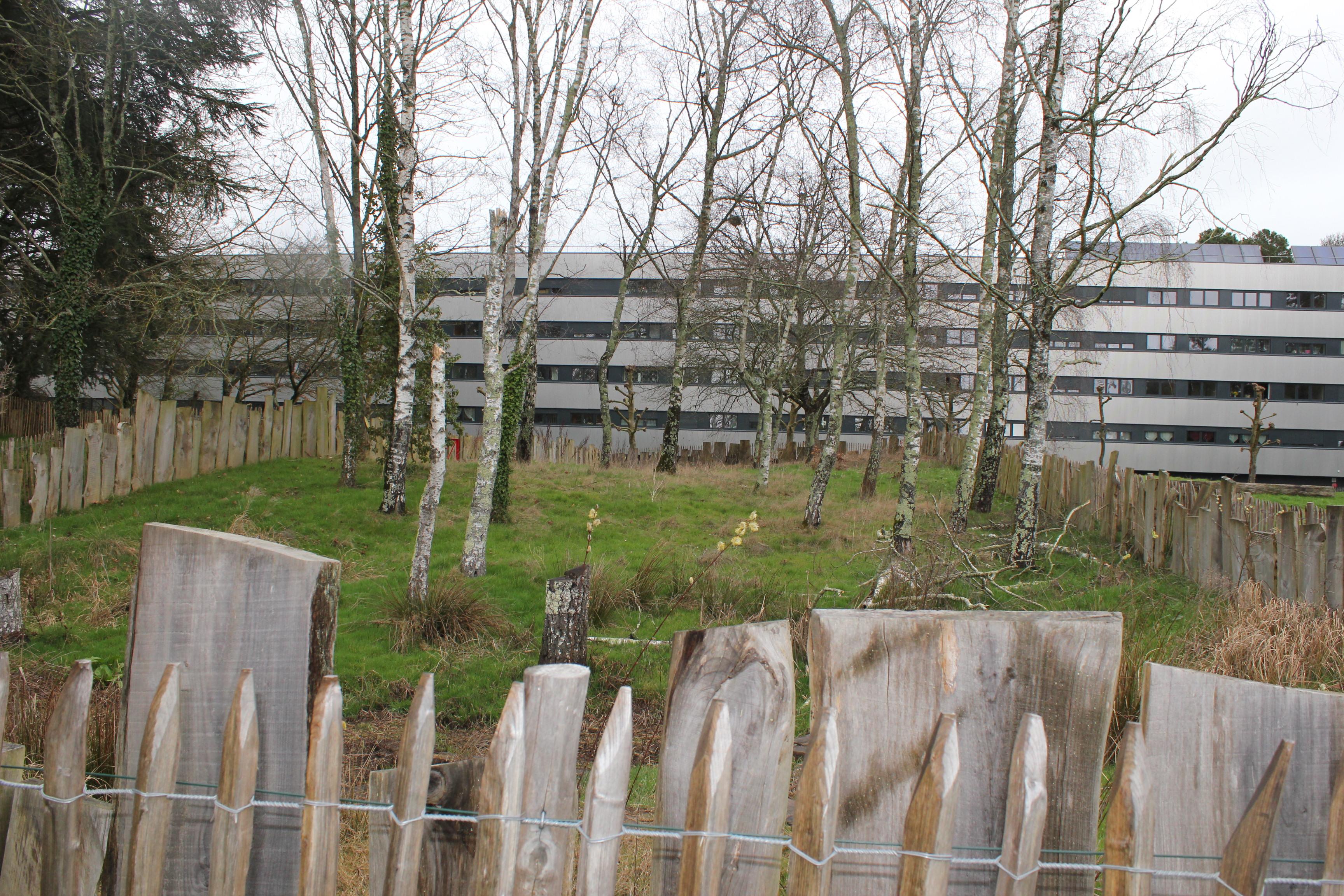 Ecobox (3)